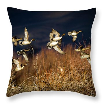 Pintails And Wigeons Throw Pillow