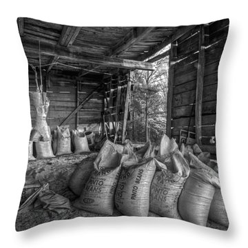 Pinto Beans Throw Pillow by Debra and Dave Vanderlaan