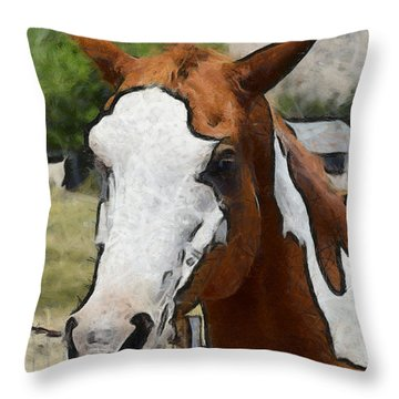 Throw Pillow featuring the photograph Pinto In The Pasture Portrait  by Barbara Snyder
