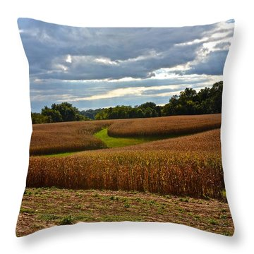 Pinwheel Cornfield Throw Pillow