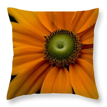 Pinwheels Throw Pillow by Cathy Donohoue