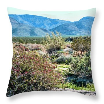 Pinyon Mtns Desert View Throw Pillow by Daniel Hebard