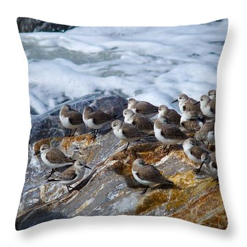 Piper Convention Throw Pillow