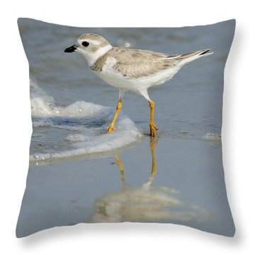Piping Plover In Surf Throw Pillow