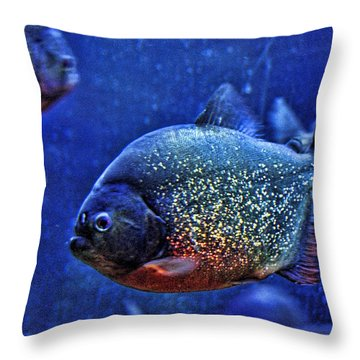Throw Pillow featuring the photograph Piranha Blue by Jan Amiss Photography