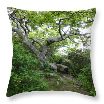 Pisgah Trail Magic Throw Pillow