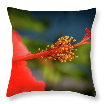 Throw Pillow featuring the photograph Pistil Of Hibiscus by Robert Bales