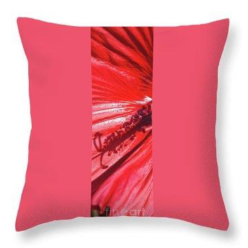 Pistil Shadow Throw Pillow