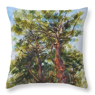 Pitch Pines, Cape Cod Throw Pillow by Peter Salwen