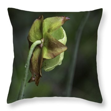 Pitcher Plant 07 Throw Pillow