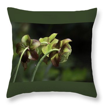 Pitcher Plant 11 Throw Pillow
