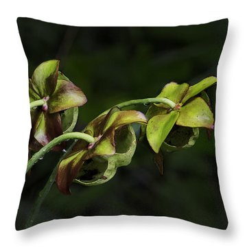 Pitcher Plant 13 Throw Pillow