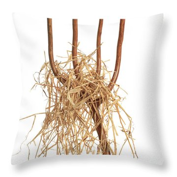 Pitchfork With Hay Throw Pillow