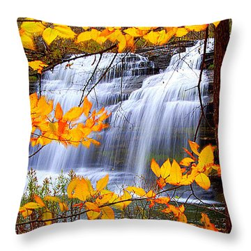 Pixley Falls Throw Pillow