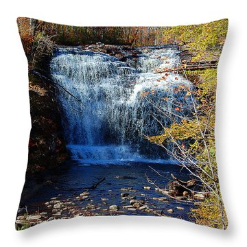 Throw Pillow featuring the photograph Pixley Falls State Park by Diane E Berry