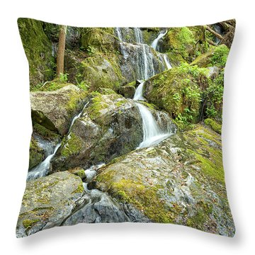 Place Of A Thousand Drips Throw Pillow
