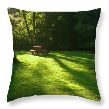 Place Of Honor Throw Pillow