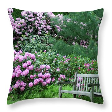Place To Rest Throw Pillow