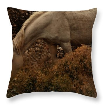 Throw Pillow featuring the photograph Placitas 6 by Catherine Sobredo