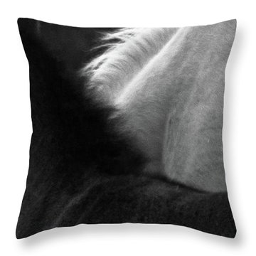 Throw Pillow featuring the photograph Placitas 9 by Catherine Sobredo