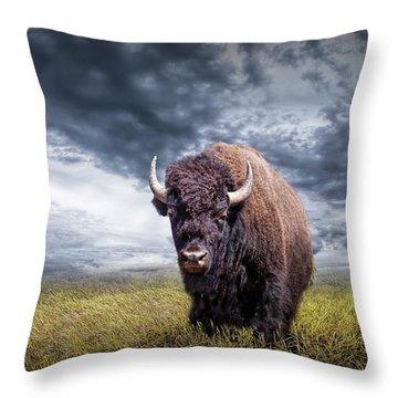 Plains Buffalo On The Prairie Throw Pillow