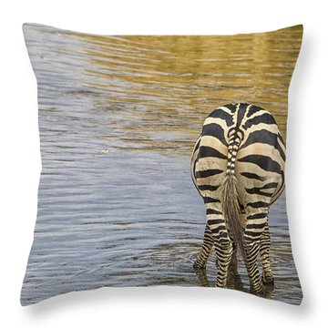 Plains Zebra Throw Pillow