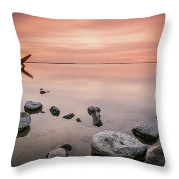 Plane And Colors Throw Pillow