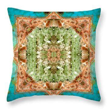 Throw Pillow featuring the photograph Planet Bounty by Bell And Todd