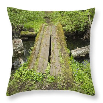 Plank Crossing Version 2 Throw Pillow by Constantine Gregory