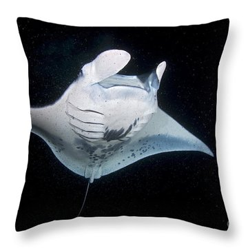 Plankton Soup Throw Pillow by Aaron Whittemore