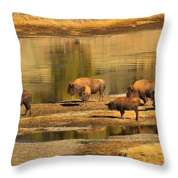 Throw Pillow featuring the photograph Planning To Cross by Adam Jewell