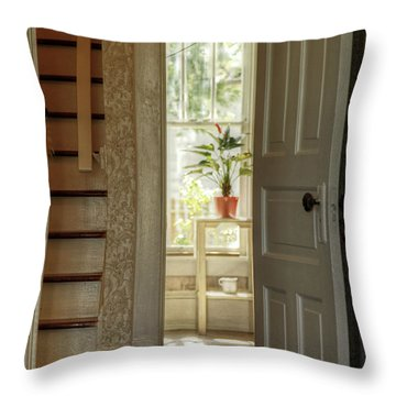 Throw Pillow featuring the photograph Plant In Window by Charles McKelroy