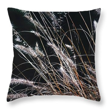Plant Throw Pillow by Mikki Cucuzzo