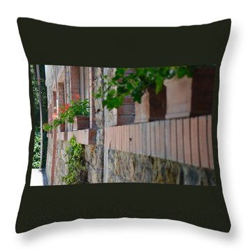Plants In Windows Throw Pillow