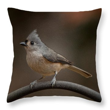 Throw Pillow featuring the photograph Plastic Wrapped Titmouse by Robert L Jackson