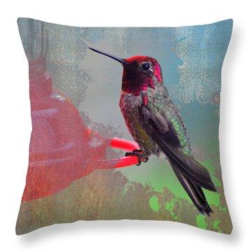 Plate 031 - Hummingbird Grunge Series Throw Pillow