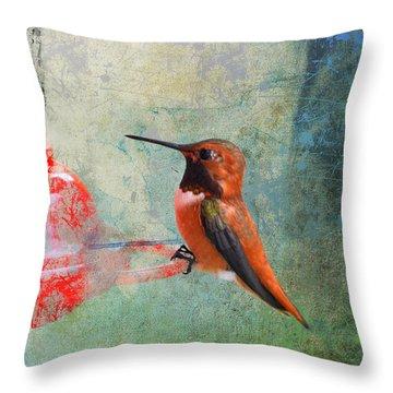 Plate 048 - Hummingbird Grunge Series Throw Pillow