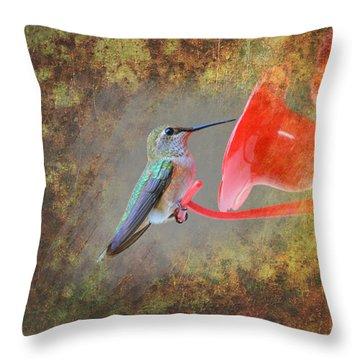 Plate 153 - Hummingbird Grunge Series Throw Pillow