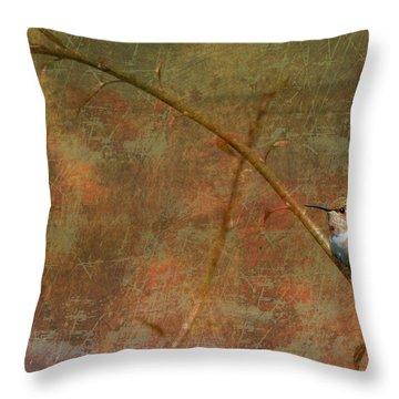 Plate 225 - Hummingbird Grunge Series Throw Pillow
