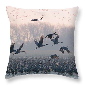 Platte River Morn Throw Pillow