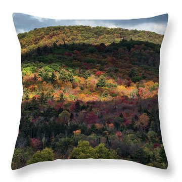 Play Of Light And Shadows. Throw Pillow