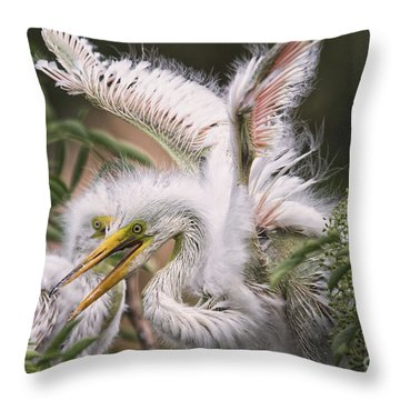 Playful Egret Chicks Throw Pillow by Mary Lou Chmura