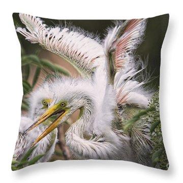Playful Egret Chicks Throw Pillow