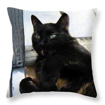 Playful Or Not Throw Pillow