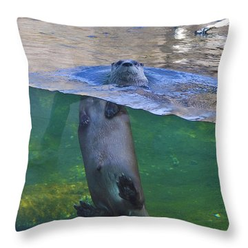 Playful Otter Throw Pillow by Kat Besthorn