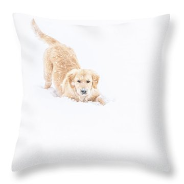 Playful Puppy In So Much Snow Throw Pillow