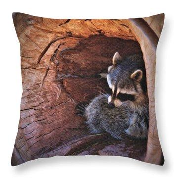 Playful Raccoon Throw Pillow