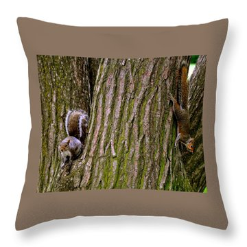 Playful Squirrels  Throw Pillow