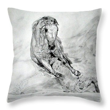 Playfull Throw Pillow by Melita Safran