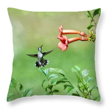 Throw Pillow featuring the photograph Playing Around by Lila Fisher-Wenzel
